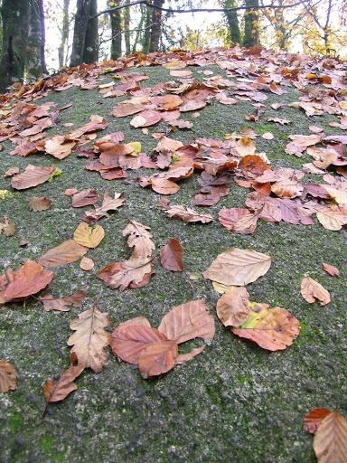 Prescriptions saisonnières : l'automne et le mois de septembre.