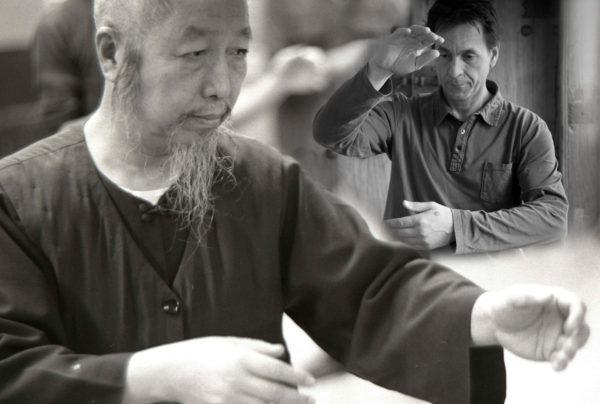 Lishan Cheng Taïchi : La forme des 37 pas – Petit cadeau de fin d'année !