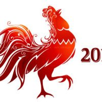 fire-rooster-2017
