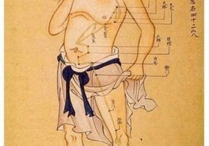 AcupunctureandMoxibustion
