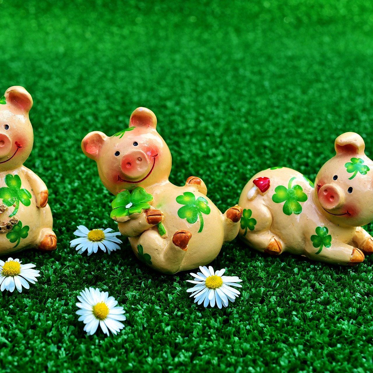 lucky-pig-2402895_1920